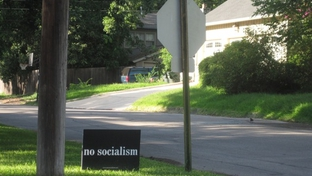 June 2010. The signs all over the Alamo Heights neighborhood.