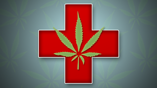 Medicinal marijuana advocates, despite being spurned by the Texas Legislature for the better part of a decade, will be back at it in 2011.