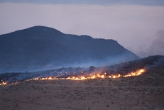 Wildfire rages along a mountaintop outside of Alpine early in the morning of April 10, 2011