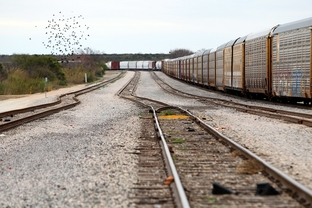 When digging gets underway, the substandard coal will be carried by train from the site in rural Maverick County through the center of Eagle Pass, Texas, and across the US Mexico border where it can be sold. Tracks run about a mile from E.K. Taylor's property, Saturday, February 4, 2012.