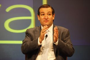 Ted Cruz at a panel on the future of Texas politics, at The Texas Tribune Festival on Sept. 22, 2012.