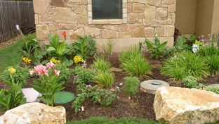A xeriscaped garden in Austin, TX