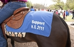"Horse by the name of ""High Calliber Pistol"" at the Texas Capitol in support of HB 2111 which permits slot gaming at existing horse tracks March 31st, 2011"