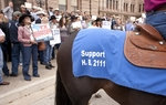 Supporters of expanded gambling laws gather at Texas Capitol on March 31st, 2011