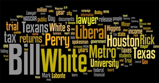 Perry campaign word cloud visualizes press releases in recent weeks.