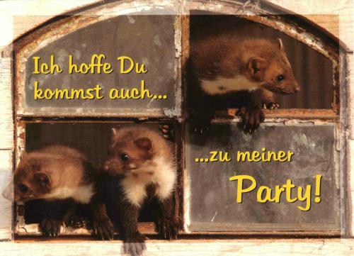 Cute postcard from Germany. Thanks, Norbert!