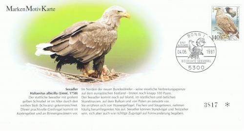 White-tailed sea eagle(オジロワシ) Thank you for great Maxim-card!!!