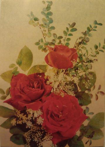 Vintage rose flower card printed in 1989 in USSR.