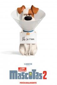 Poster de:1 La Vida Secreta de tus Mascotas 2