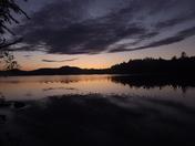 Loons at dusk