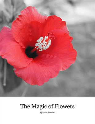 The Magic of Flowers