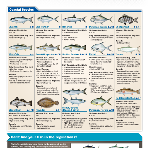 Florida saltwater fish size limits for Texas fishing bag limits