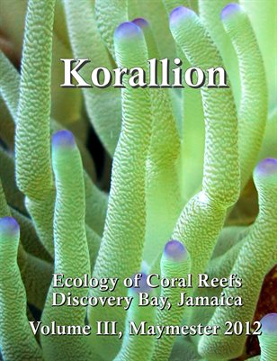 Korallion - Maymester 2012