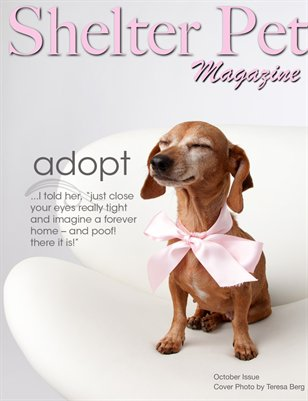 Shelter Pet Magazine