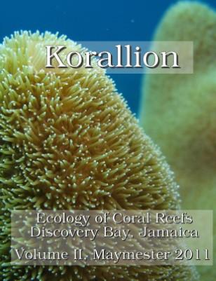 Korallion - Maymester 2011
