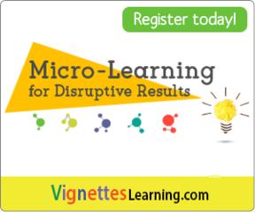 Micro learning 300x250