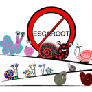 No Escargot! Only Delightful Snails