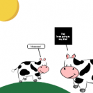 Cow and Cow