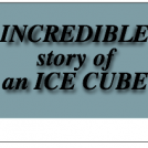 INCREDIBLE story of an ICE CUBE