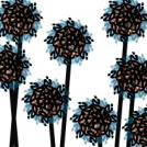 Zek Flowers