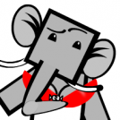 Re-education for Elephant