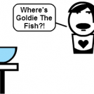 Finding Goldie!