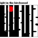 Night in the birchwood