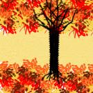 Autumn with item zek!