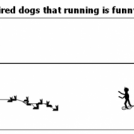 Convincing tired dogs that running is funny...