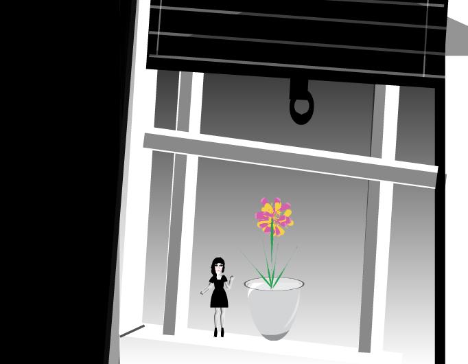 Una flor para Mr. Abrotons