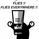 FLIES !