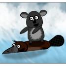 Aussies' - surf riding