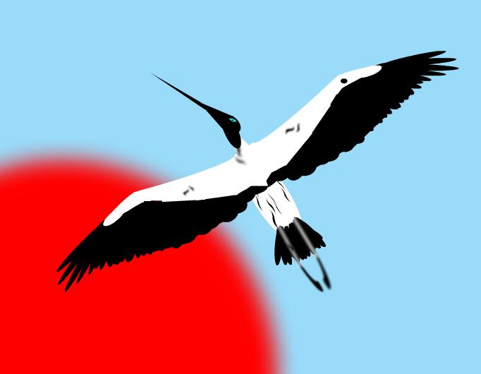 Zikoina - Stork