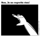 Non, Je ne regrette rien!