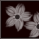 Flowers in Sepia Tone