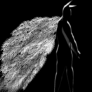 My dark angel