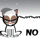 The Cat says NO