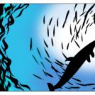 Undersea...