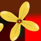 Lore berriaren bila - Looking for a new flower
