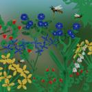 Botanical Workshop zillionth landscape