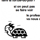 Tortue-catastrophe
