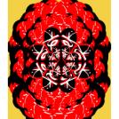 Zek Flower
