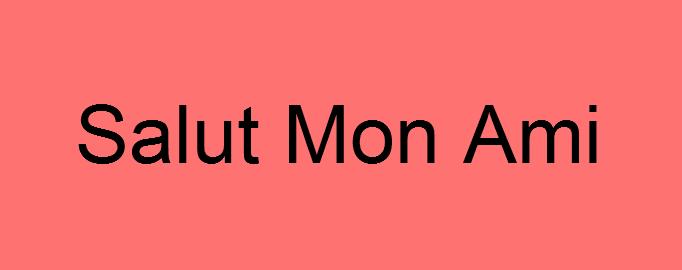 Stripgeneratorcom Salut Mon Ami Cover
