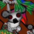koala bear...