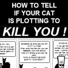 Your Cat Wants to Kill You !