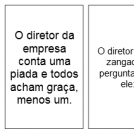 Diretor da Empresa
