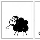 Vyjádření ovce Klarisy k popularitě Weytory