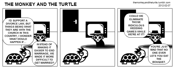 The Monkey and the Turtle (2012-02-07)