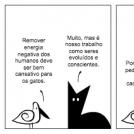 Panti e o trabalho dos gatos