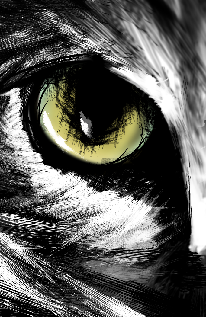 eye of the werewolf..